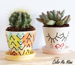 Voorhees Cute Planters